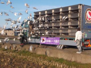 「2020年度 伊賀国際サクセスレース200K」開催!
