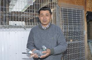 趣味のピジョンスポーツ 第6回「委託とオープンレース、ダブルでエンジョイ!」 久保田 隆鳩舎