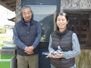 趣味のピジョンスポーツ 第8回「職場で出会ったピジョンライフ」永田幸枝鳩舎