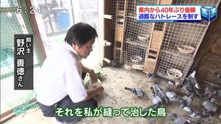 GN覇者・野澤鳩舎を地元テレビ局が紹介